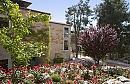 בית בגליל | מלון בוטיק וספא גינה מטופחת