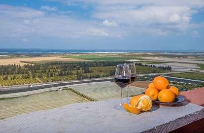 צימר באיזור הצפון | ימה- צימר וספא יין