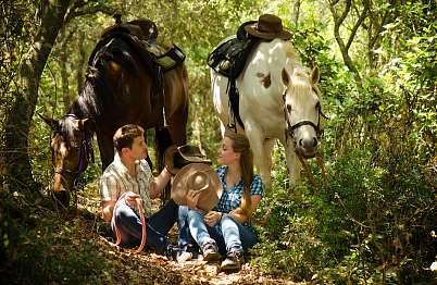 צימר באיזור הצפון | בקתות משק חפר - תוכלו להישאר לבד, רק אתם, הסוסים והטבע