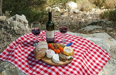 צימר באיזור הצפון | בקתות משק חפר - ערכת הפיקניק כוללת יין, גבינות המקום, מאפים...