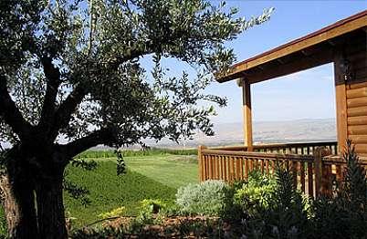 צימר באיזור הצפון | בקתה בחווה- לזוגות בלבד - עץ הזית